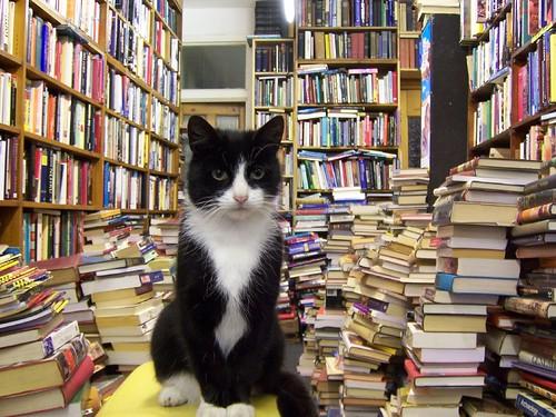 West End Bookshop