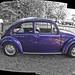 VW_beetle