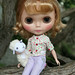 Daisy on a tree