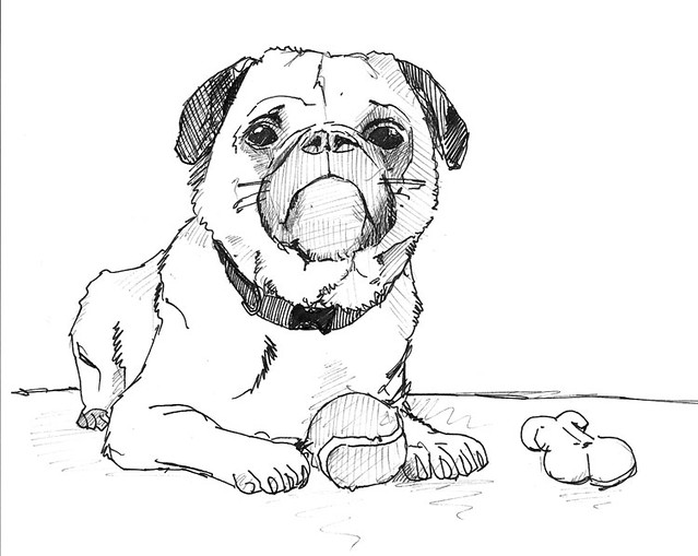 Dog Drawing Exploration 2 Trying To Figure Out What To