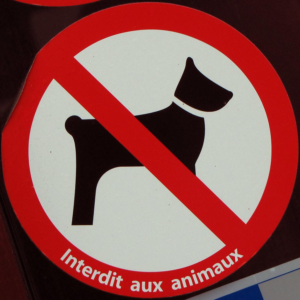 No dogs Interdit aux animaux Paris, France Leo
