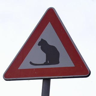 Warning, cats! - Attenti al gatto! | by funadium