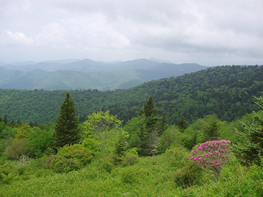 Cowee Mountains Overlook, Blue Ridge Parkway, North Caroli ...