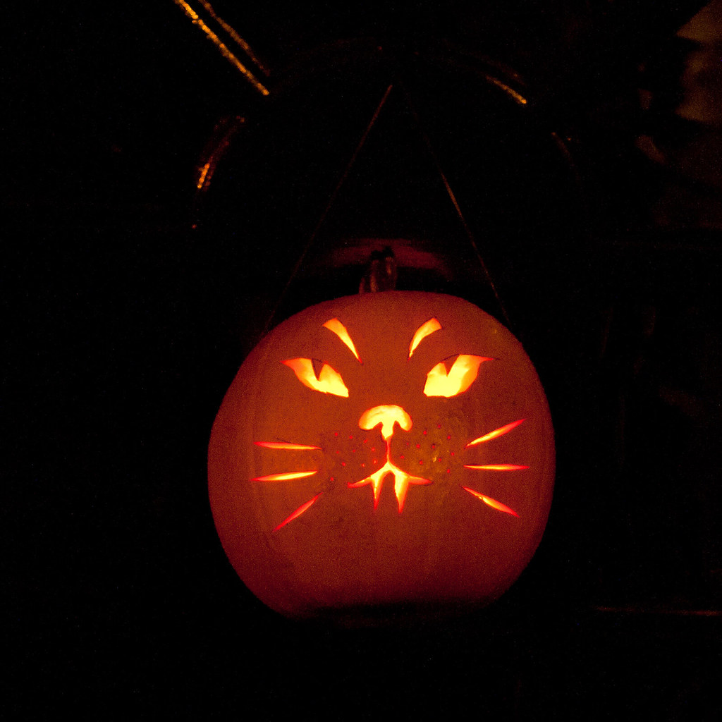 Cat pumpkin this year i carved a cat 39 s face into the for Cat carved into pumpkin