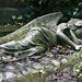 The Sleeping Angel at Highgate Cemetery
