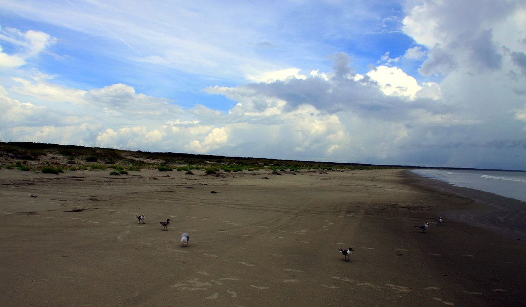 Cumberland Island Coastline Pictures To Pin On Pinterest