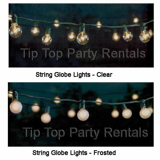 String Lights Globe Frosted images