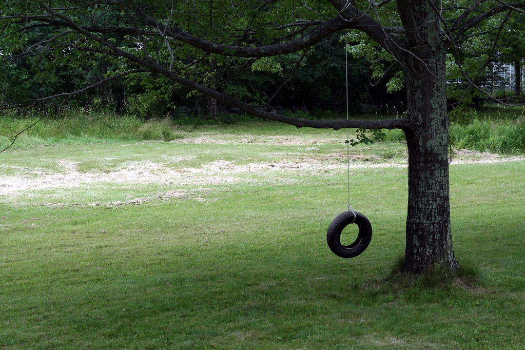 July 5 2007 Tire Swing I Love Tire Swings This One Is