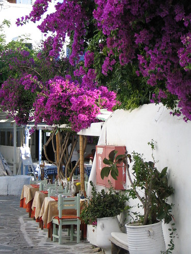 Mykonos Cafe Flowers | by Jonathan Assink