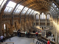 p4141615 - Natural History Museum by *CezCze* (off-line)