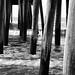 Under the OC fishing pier