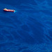 20100618-tedx-oil-spill-1346