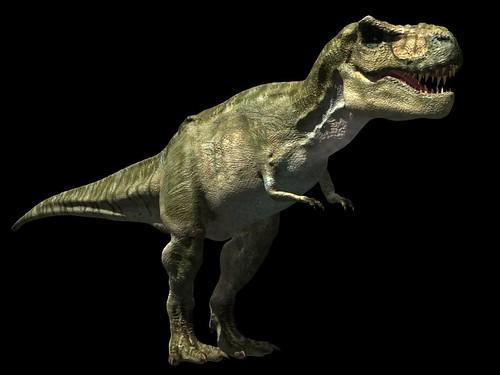 Tyrannosaurus Rex Wallpaper 1 | Flickr - Photo Sharing!