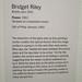 MoMA 112 Bridget Riley - Fission note