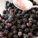 Blackberry Cobbler #2 066