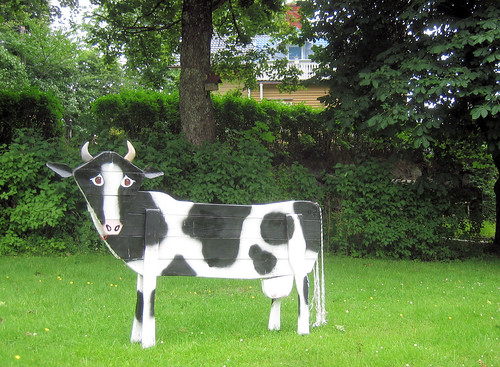 Cow Art | by Steffe