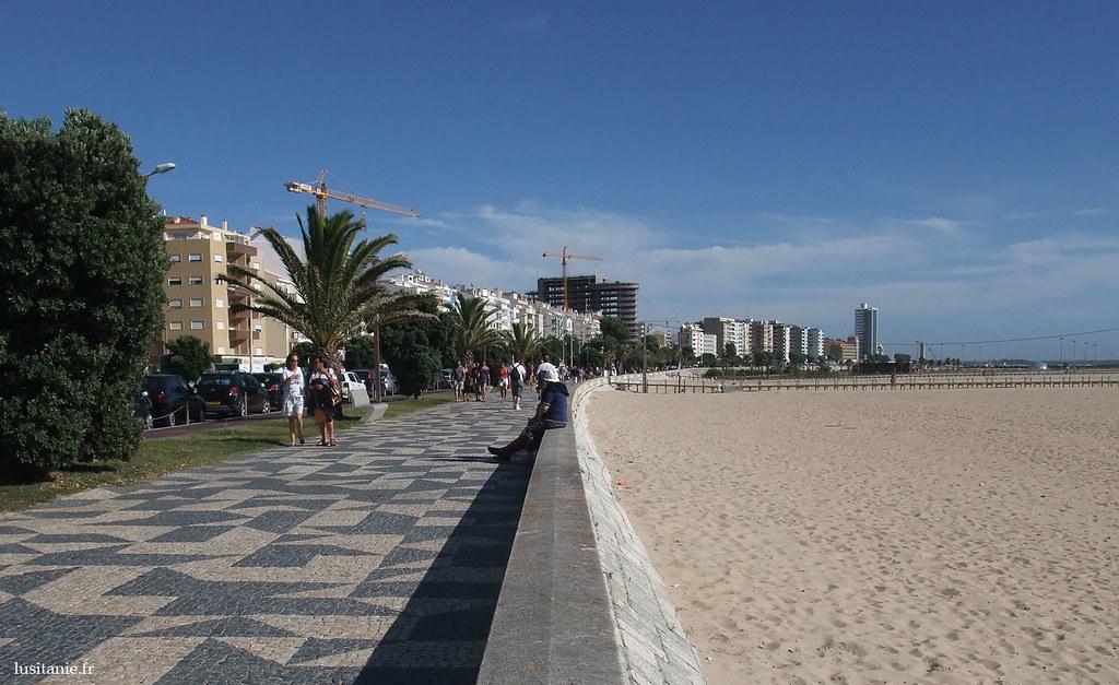 Petite balade le long de la plage ?