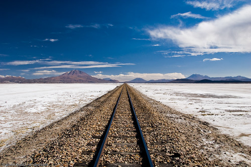 Train Tracks to Where? | by Marc Shandro