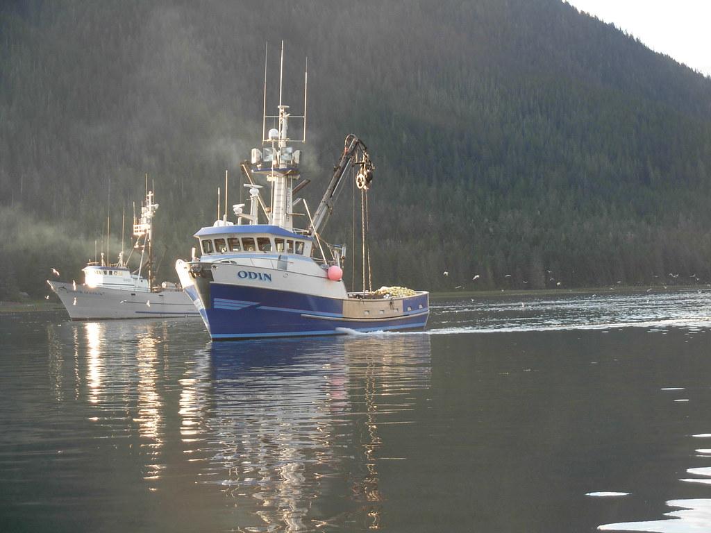 Harbor walk petersburg alaska fishing boat odin for Petersburg alaska fishing