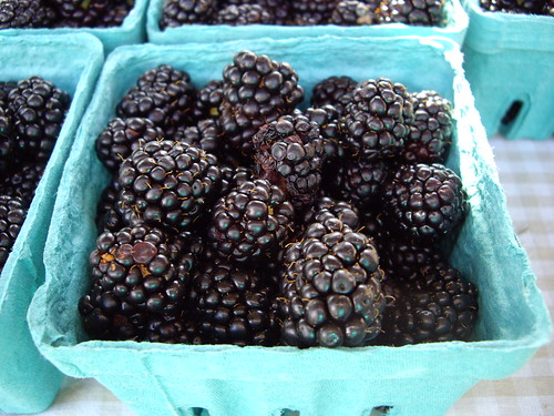 063007blackberries | by swampkitty