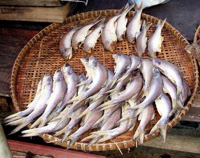 Half dried salted fish thai name pla ne for Dried salted fish
