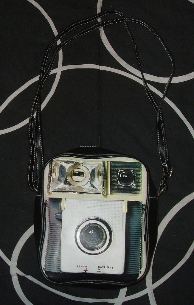 Camera bag that looks like a purse