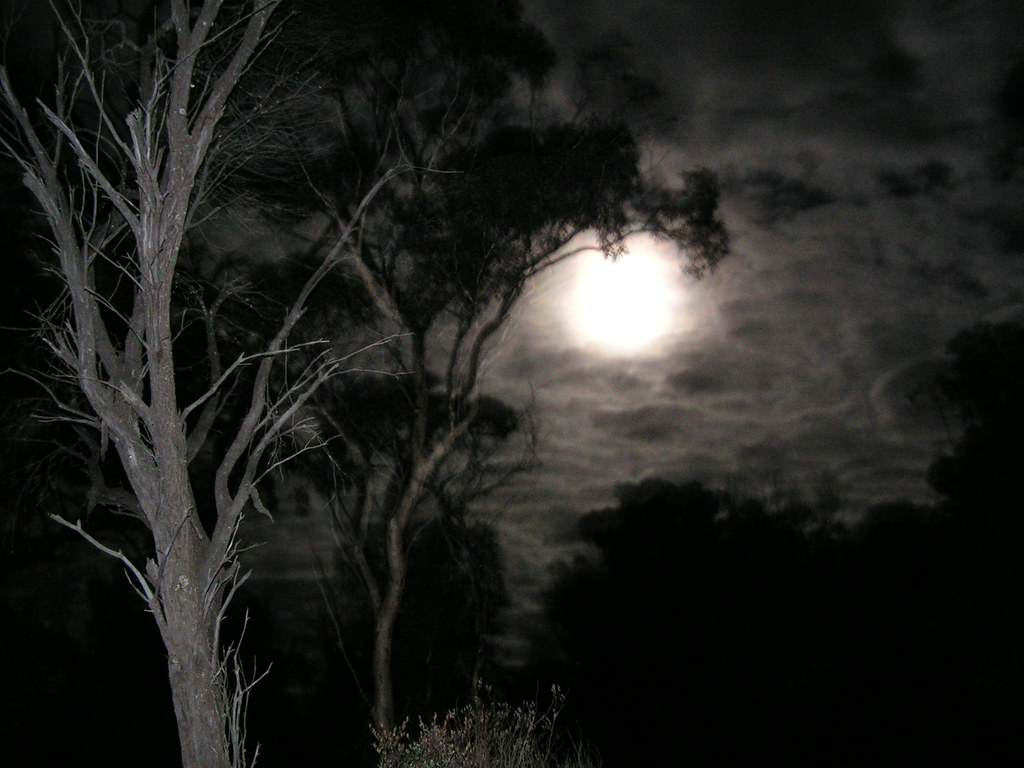 scary night (includes tax) for the psycho path, sinister circus, haunted manor and  haunted hayrack ride note: scary farm will be closed on halloween night.