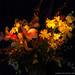 Flowers, horizontal