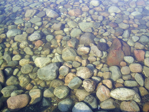 Pond Rocks Rocks At The Bottom Of A Pond In Ignace