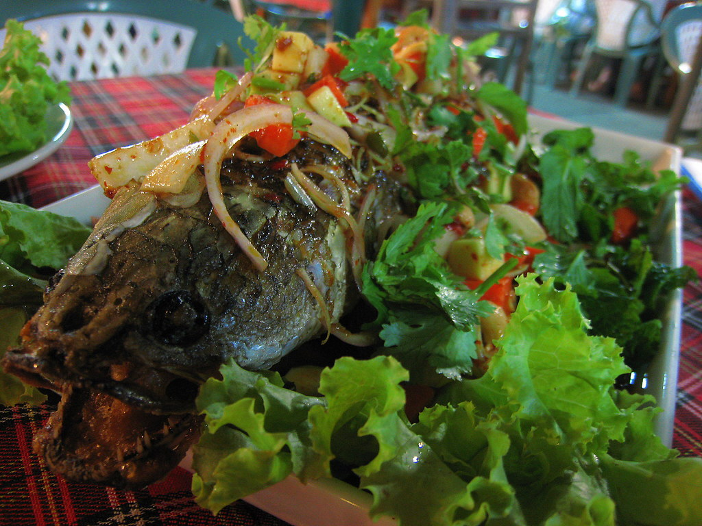 Snakehead fish topped with salad the menu said for Crazy fish menu