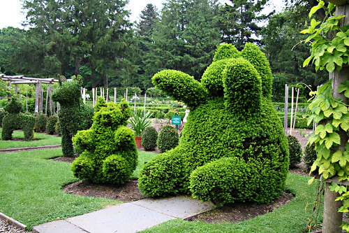 Green Animals Topiary Garden In Portsmouth Rhode Island