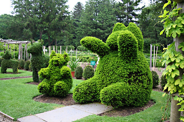 green animals topiary garden portsmouth rhode island by jkenny3 - Green Animals Topiary Garden