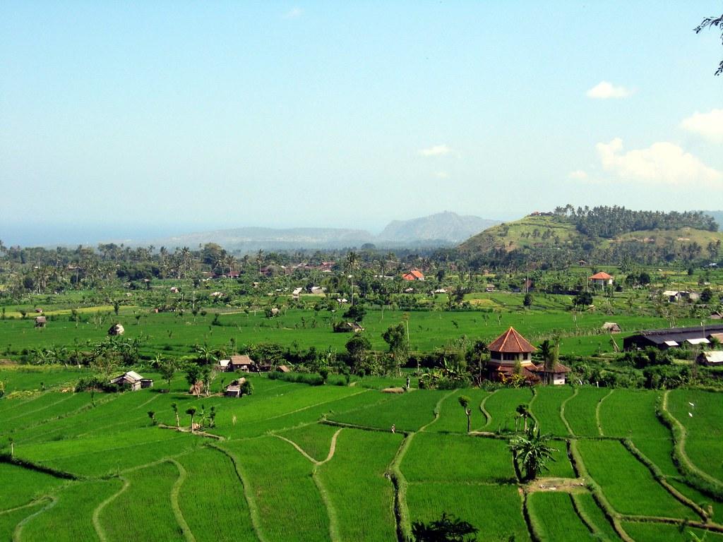 Bali-200709-380-KMS