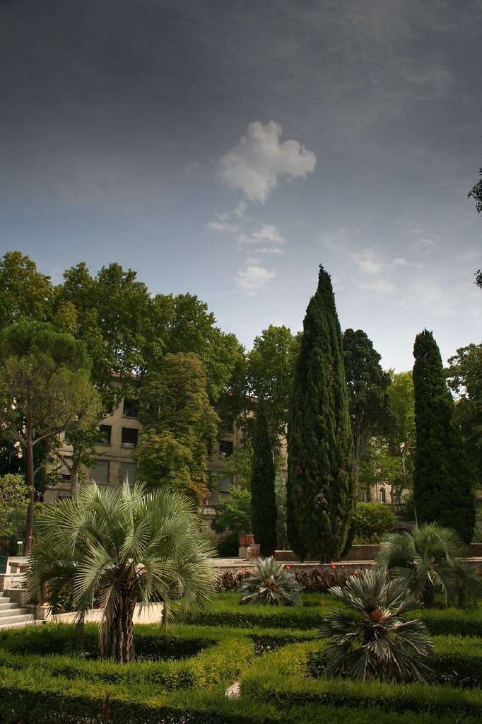 Jardin des plantes thomas vandenberghe flickr - Jardin des plantes rouen adresse ...