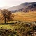 the cumbrian landscape