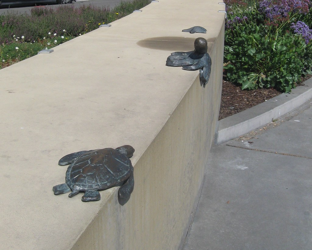 bench art skateboard deterrent cathy knoll flickr