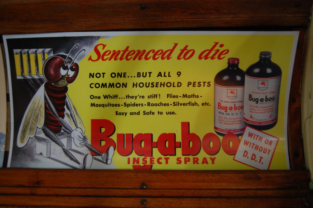 ddt to spray or ban Millions of ddt aerosol bombs were used to spray the interiors of tents, barracks and mess halls throughout european refugee camps, along the span of the burma road .