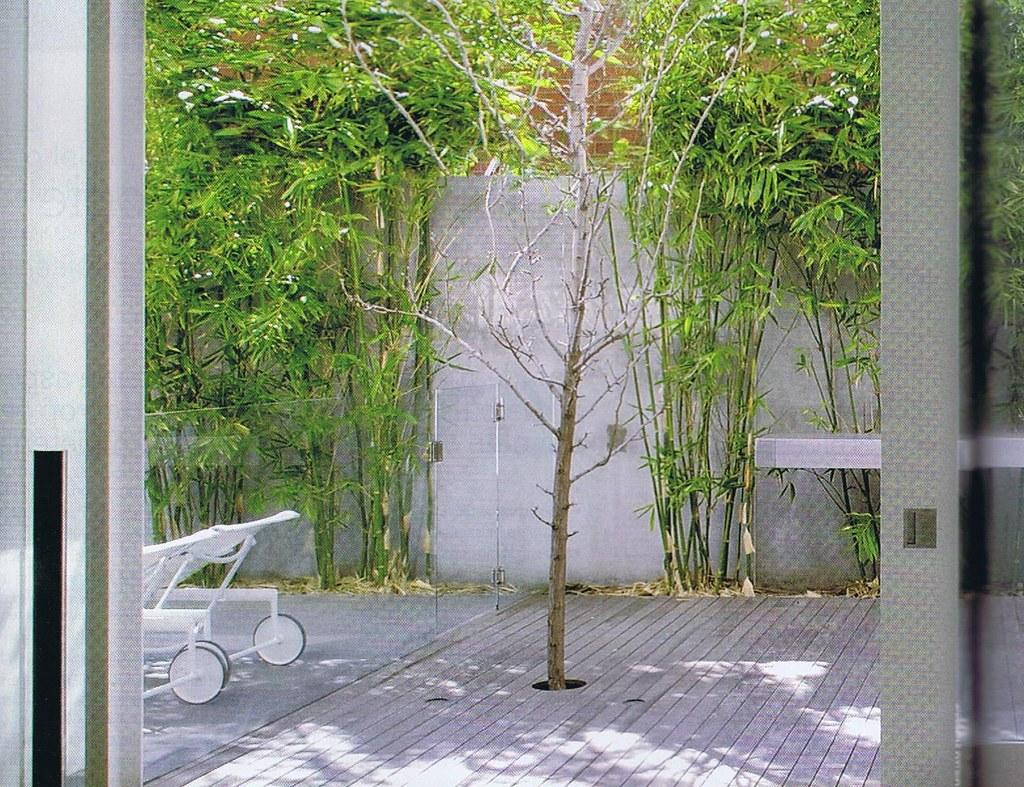 Voorbeeld bamboe en kleine tuin chiardino tuindesign helpt flickr - Voorbeeld van tuin ...