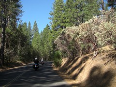 Heading out on Old Highway 120