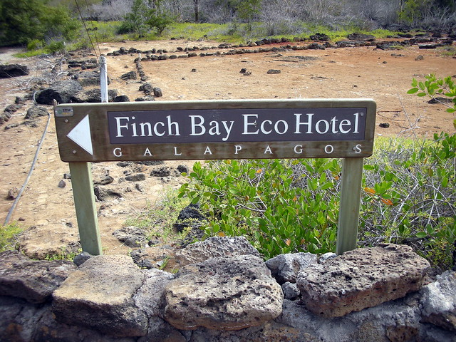 Finch Bay Hotel Tripadvisor