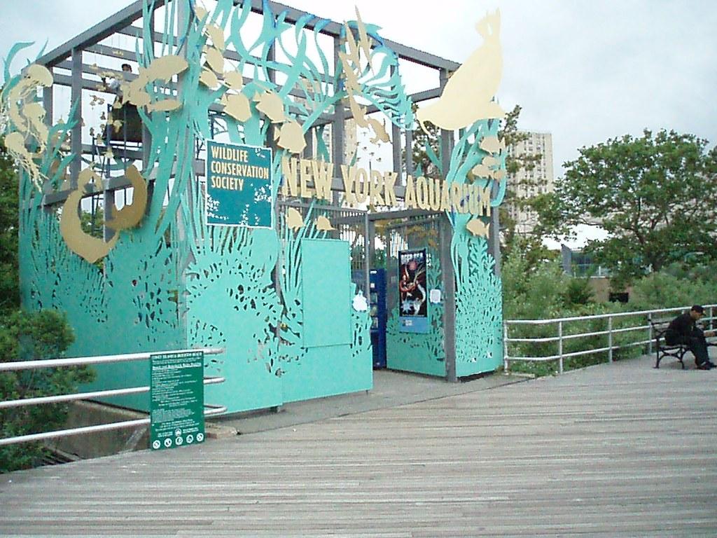 Eddie S Coney Island Commerce Charter Township Mi Menu