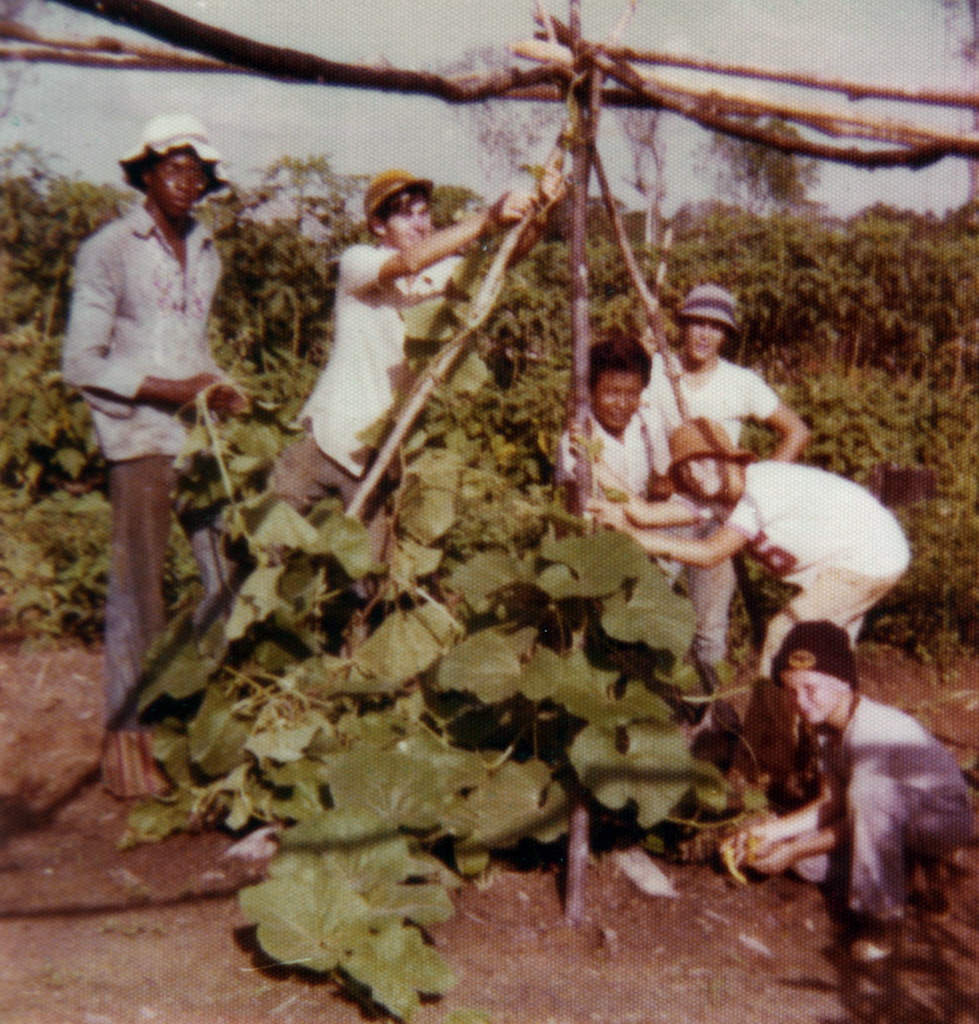 Jonestown 1976 Agricultural Project | Tommy Johnson, David ...