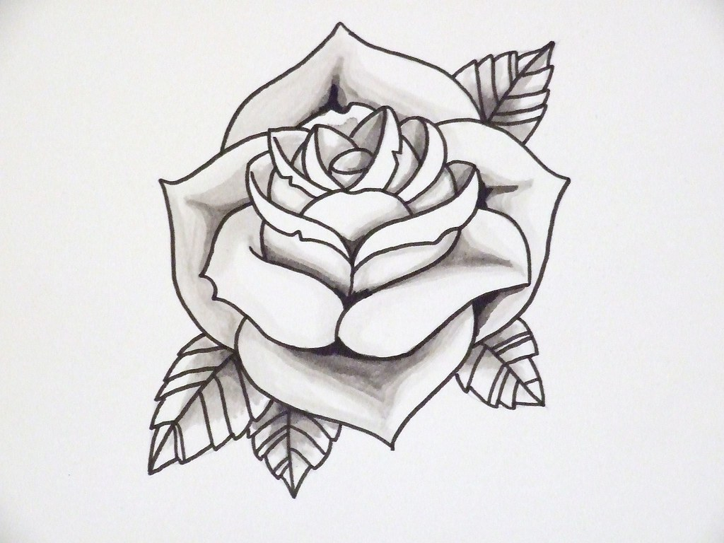 Easy Rose Drawing Outline