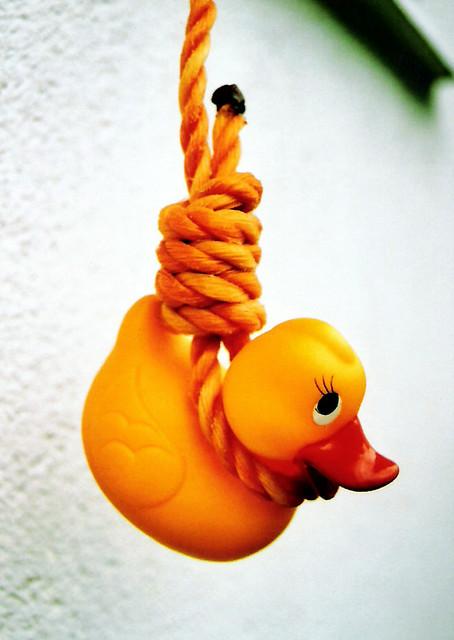 "suicide duck | ""E..."