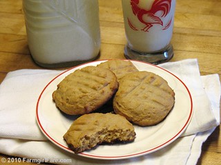 Sugar Free Honey Peanut Butter Cookies | by Farmgirl Susan
