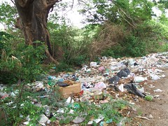 Trash on the road near Juchitan