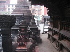 A visit to the monkey temple...