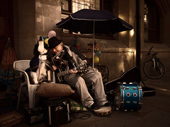 Singing Dog, Oxford, UK by weesam2010