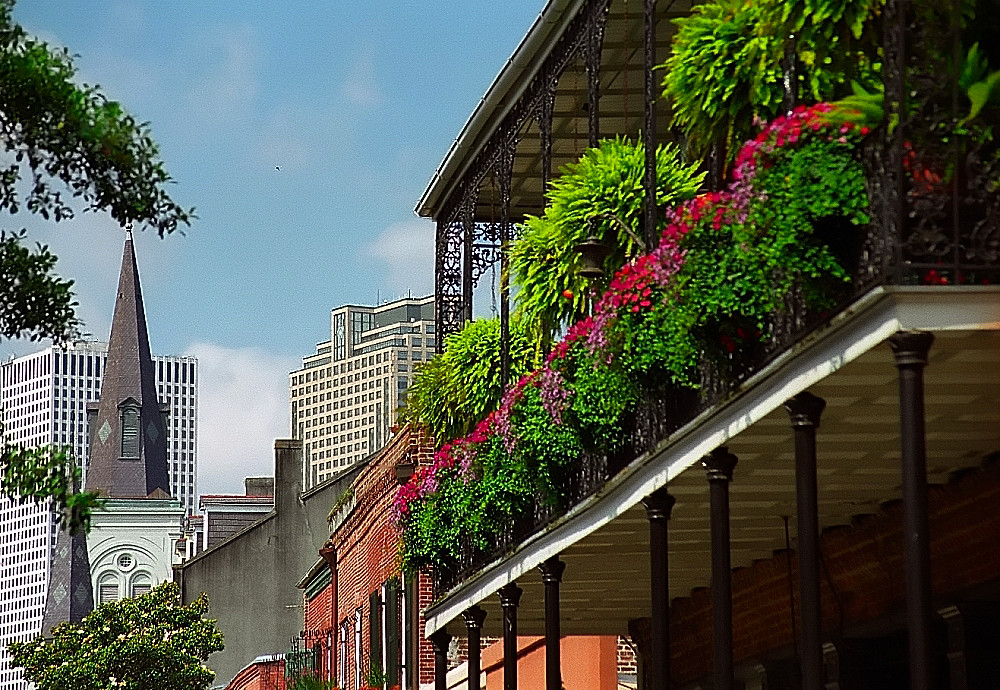 New Orleans City Tour Coupons