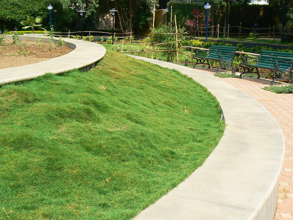 tapis pelouse